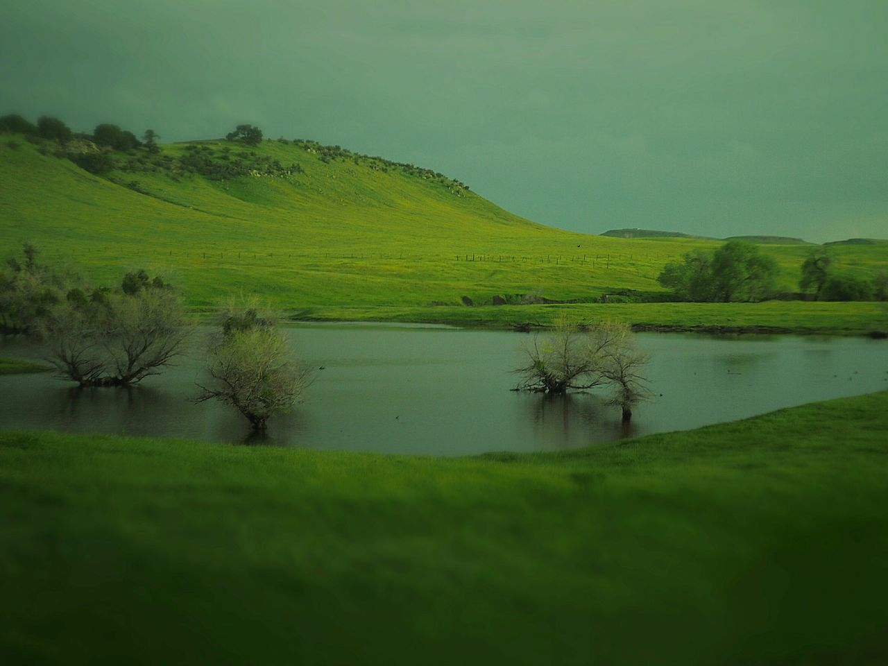 Spring Green Countryside Glamour California Mountainscape via Fotofall