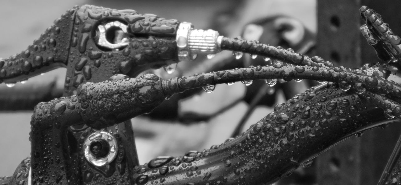 Saturated. Focus On Foreground Close-up Blurred Background Depht Of Field Day Outdoors Bicycle Brakes CablesWaterdrops Black And White Wet Photography