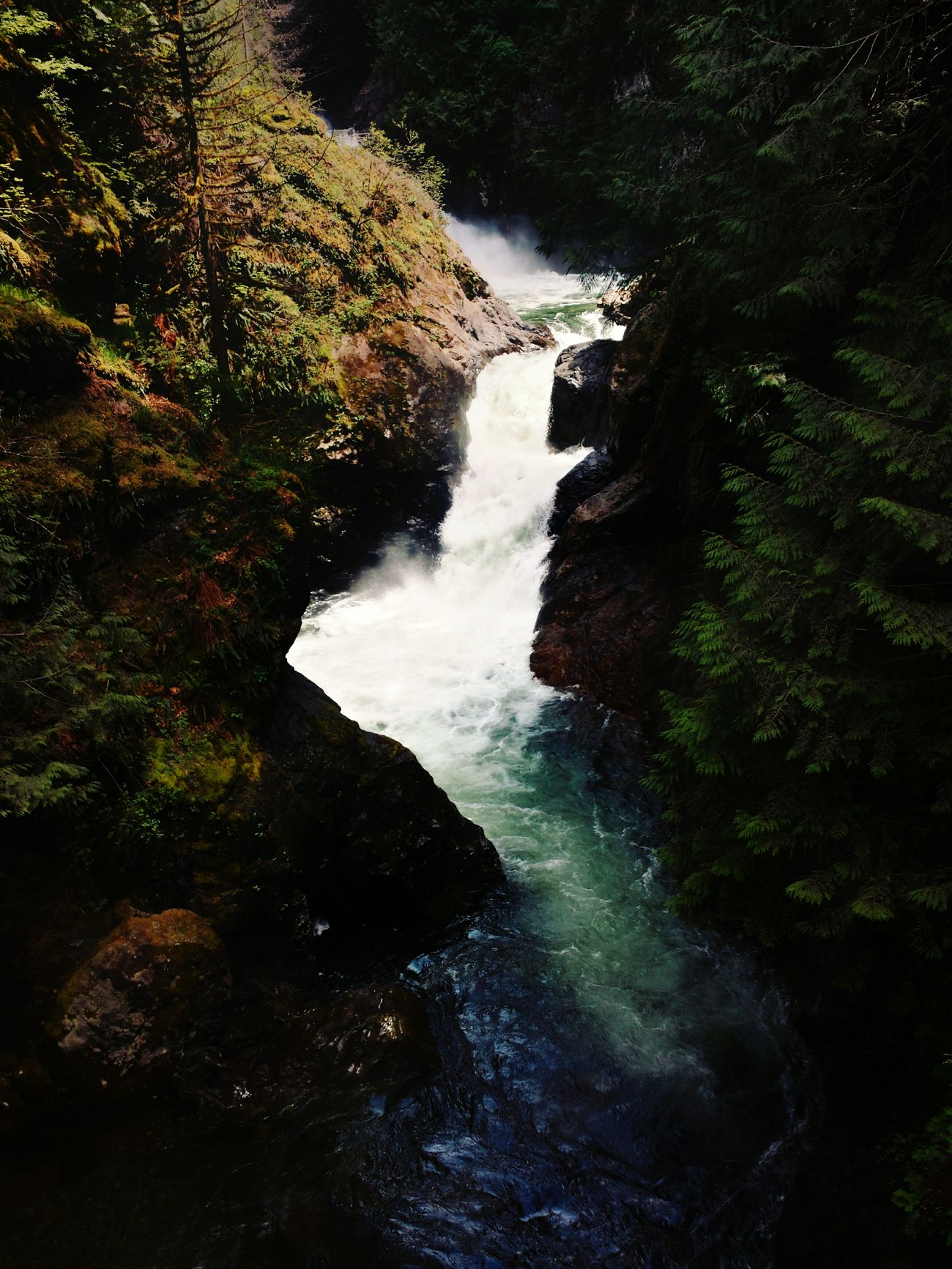 Pre-waterfall. Water Nature Motion No People Outdoors Beauty In Nature Waterfall Day Forest Scenics Power In Nature Tree River Backgrounds Hiking Washington State Fresh PNWonderland Nature_collection Twin Falls PNW Moss Pacific Northwest  Non-urban Scene Rock - Object