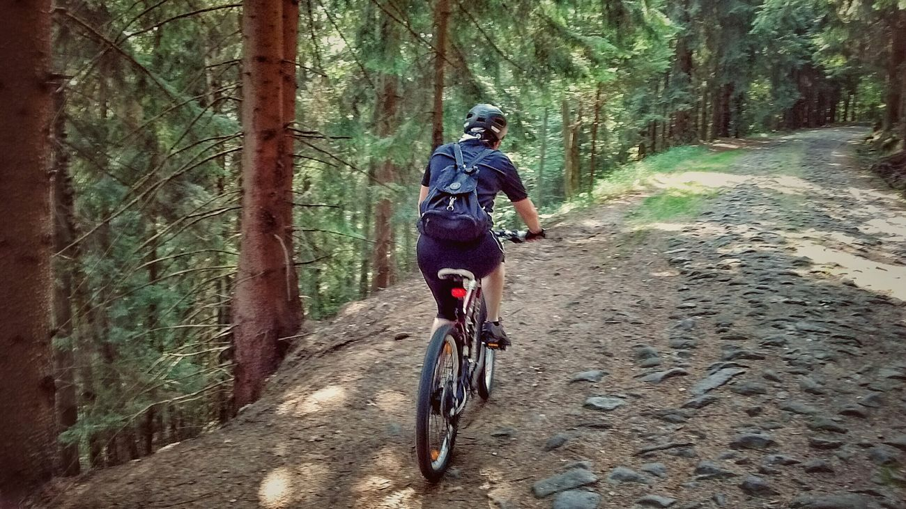 Going The Distance Forest Mountain Summer Views Holiday POV In The Forest Bike Trip Sportgirl Sportsphotography
