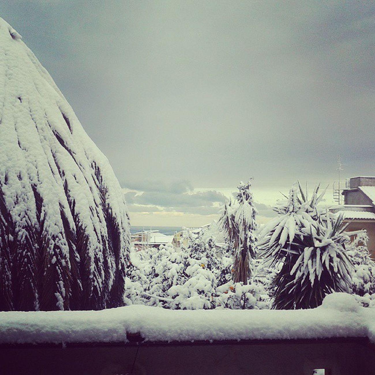 La Neve agli irti colli. Neve Dopounavita Eiodevostudiare . Zacca