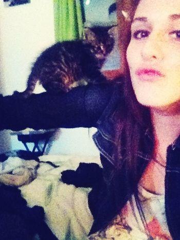 Je suis tomber amoureuse de ce kiki, il est trop magnon?? Cat Cute Love