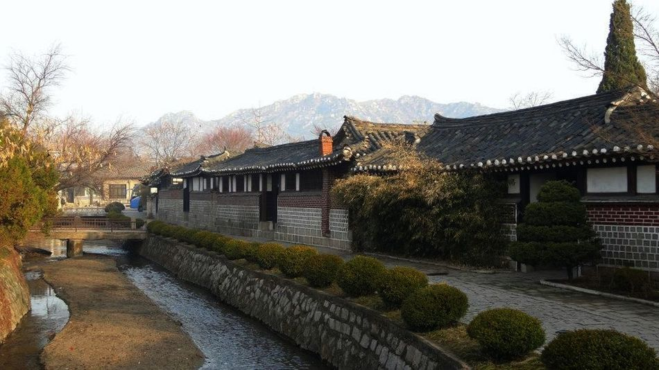 Abundance Ancient Civilization Architecture Building Exterior Built Structure Close Up Composition Day DPRK Elevated View Garden Green Color Hedge High Angle View Kaesong Leading Narrow No People North Korea Outdoors Perspective Roof Spirituality EyeEm Best Shots Landscapes With WhiteWall