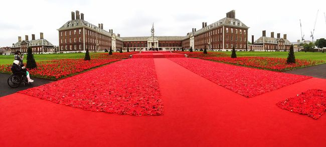 Red Architecture Building Exterior Built Structure Petal Red Color Flower Head Day Outdoors Culture Façade Surface Level Poppies  Memorial Wheelchair Disabled Chelsea London Panorama Panoramic The Way Forward Cloudy