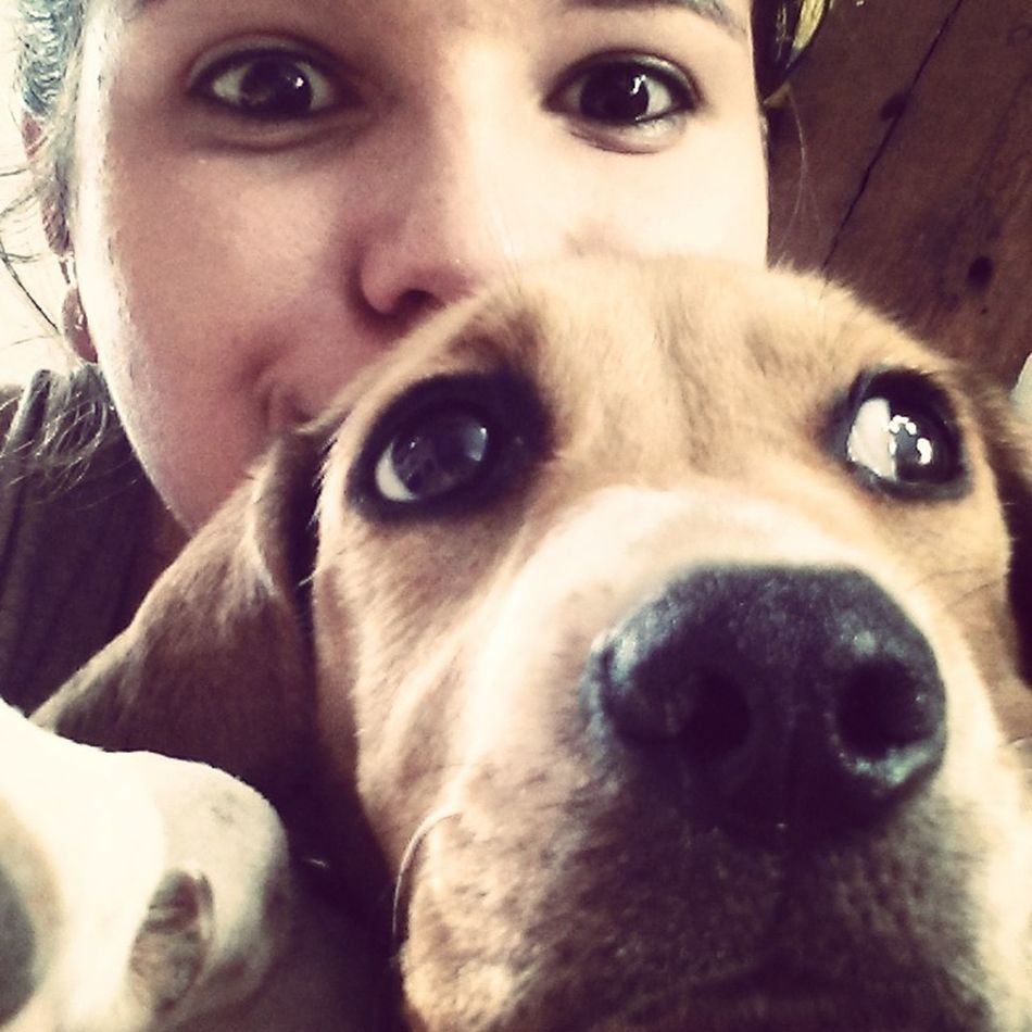 Sam. ♥ I Love My Dog