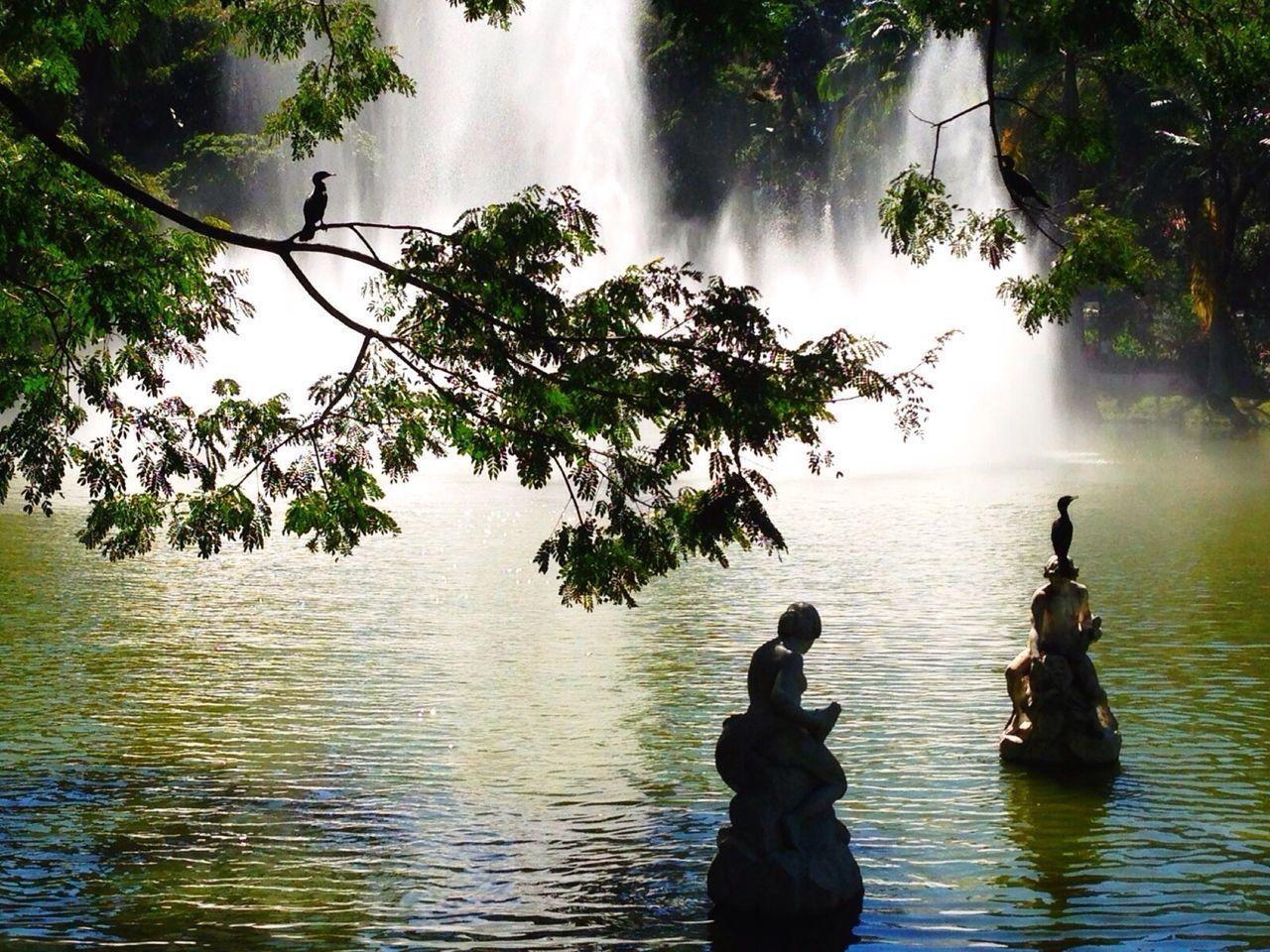 Beautiful stock photos of brazil, Brazil, Day, Fountain, Human Representation