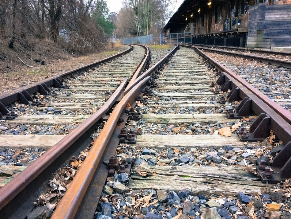 Two railway tracks go in different directions Berlin Day Diffrent Direction Future Goal Nature No People Nobody Outdoors Perspective Rail Transportation Railroad Tie Railroad Track Railway Track Retro Target The Way Forward Tracks Train Train Tracks Transportation Travel Tree Which Way To Go?