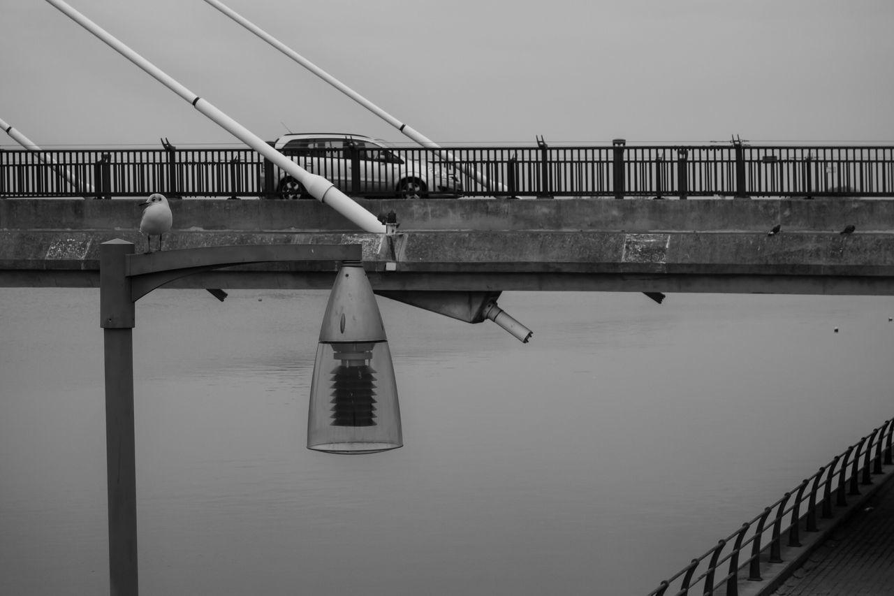 Marinelake Bridges Car Black & White