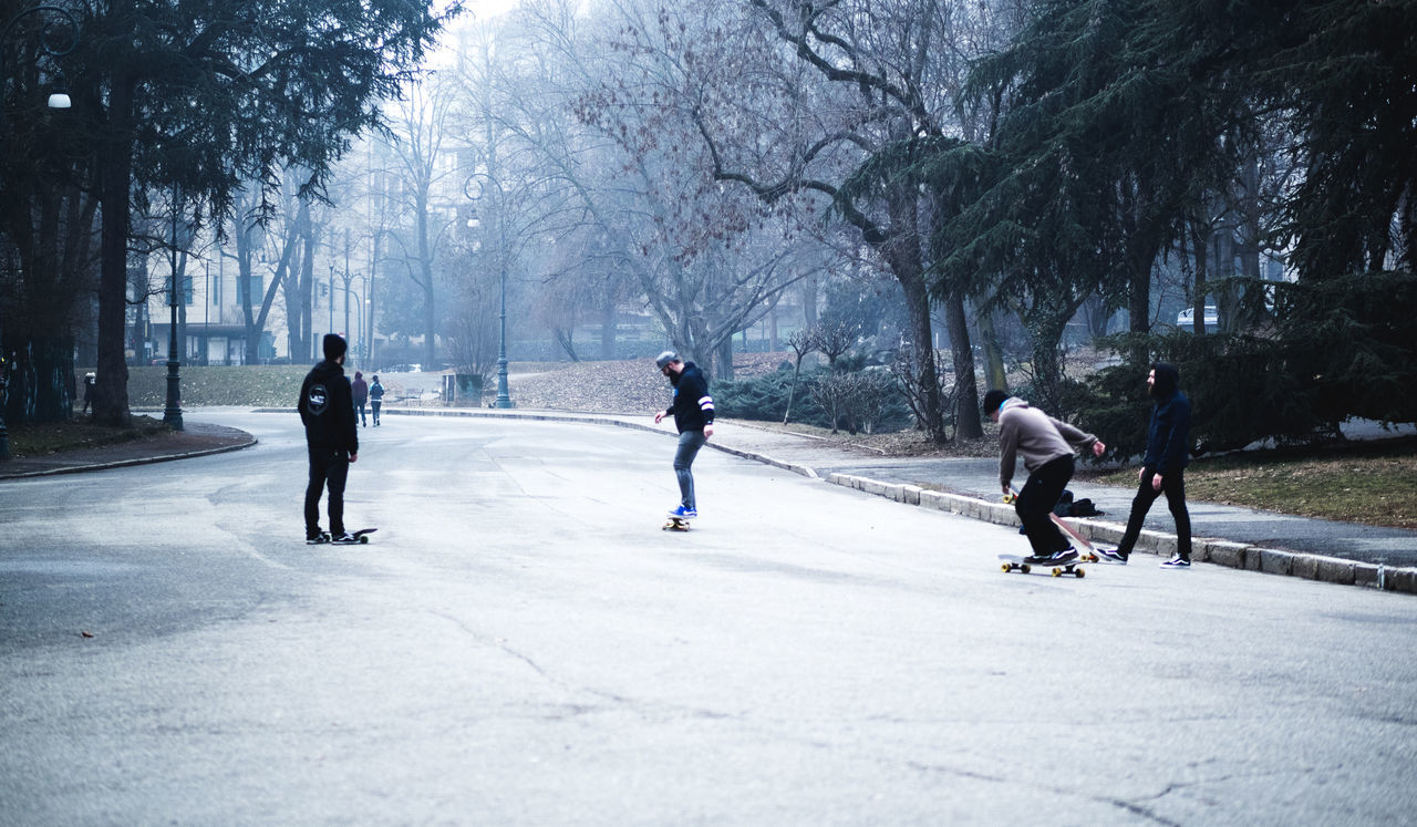 Cold Temperature Day Ice Hockey Ice Rink Men One Man Only Outdoors People Real People Skate Skateboard Snow Snowing Sport Sports Sportsman Tree Winter