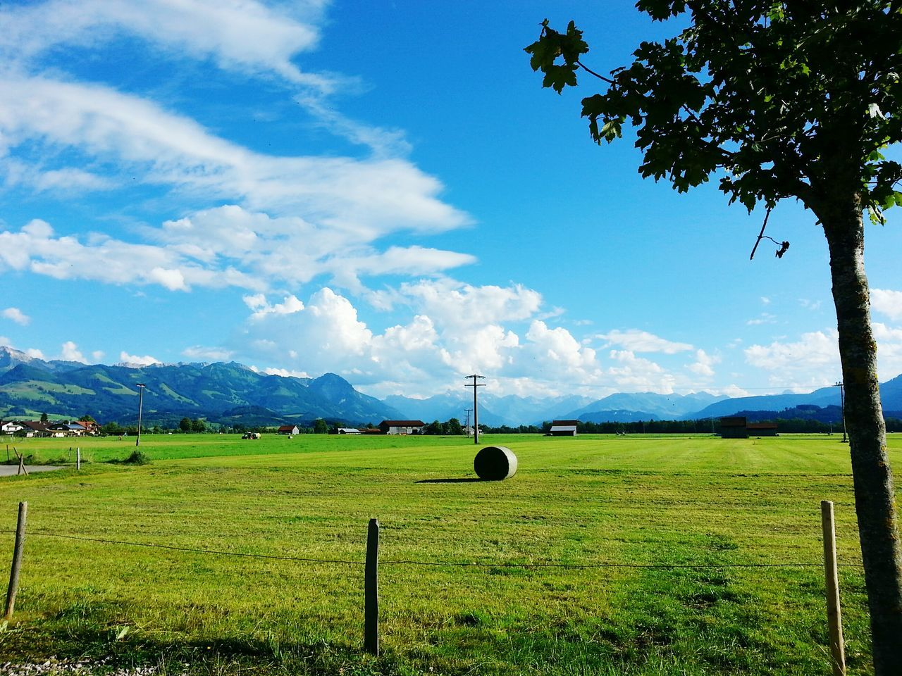 Alps Of The Allgaeu 🚞 Sky Cloud - Sky Rural Scene Agriculture Landscape Nature Beauty In Nature Tranquility No People Tranquil Scene Outdoors Tree Day Eco Tourism Fields Grassland Mountain Range Alps Wide Shot Idyllic Scenery Traveling EyeEmNewHere Hiking Adventures The Great Outdoors - 2017 EyeEm Awards Live For The Story Your Ticket To Europe