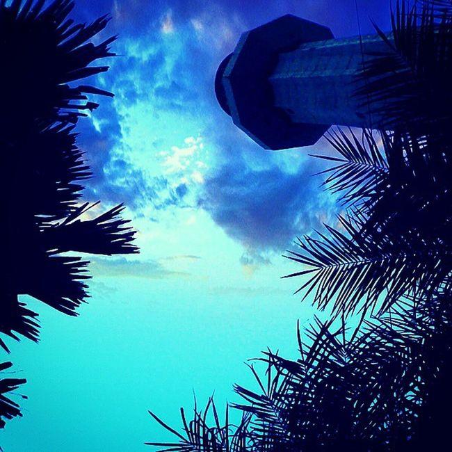 Guten morgen world :) Morning Inspeople Malang Mylife Skylight Instatraveling Ins