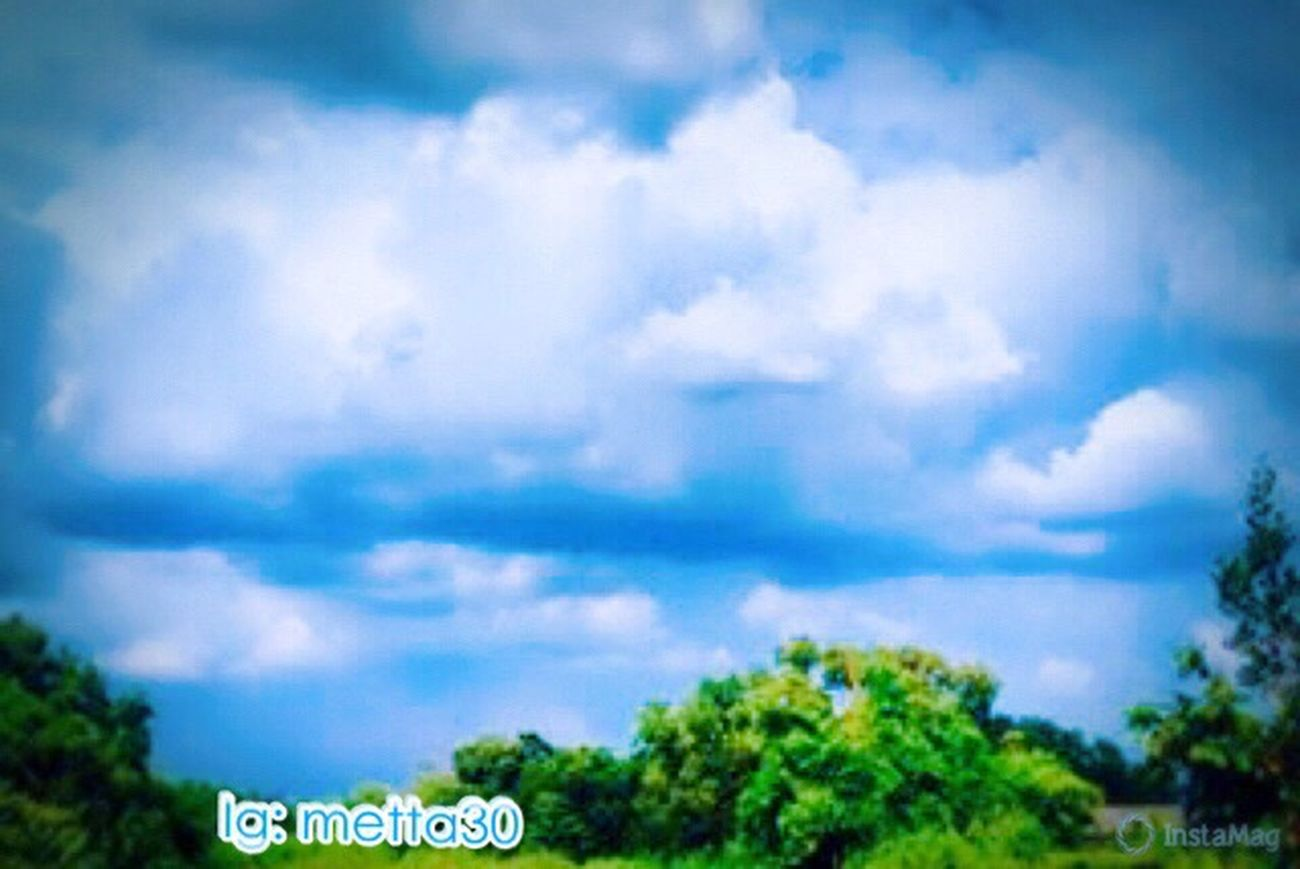 Beautiful View Cloud - Sky Tree Sky Green Cloud Blue Nature Myphoto MyPhotography Pic MyRoom Picoftheday Beauty In Nature Atmyroom Eyeem Photo Eyeemphotography EyeEm EyeEm Nature Lover EyeEm Best Shots