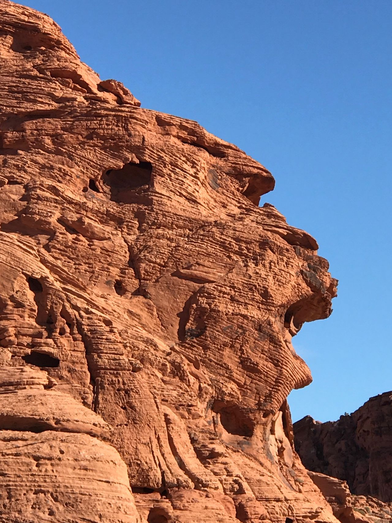 Baboon Rock @ Valley of Fire State Park Rock Formation Rock - Object Geology Beauty In Nature Nature Physical Geography Sunlight Scenics Tranquility Tranquil Scene Sky USA Valley Of Fire State Park Valley Of Fire No People