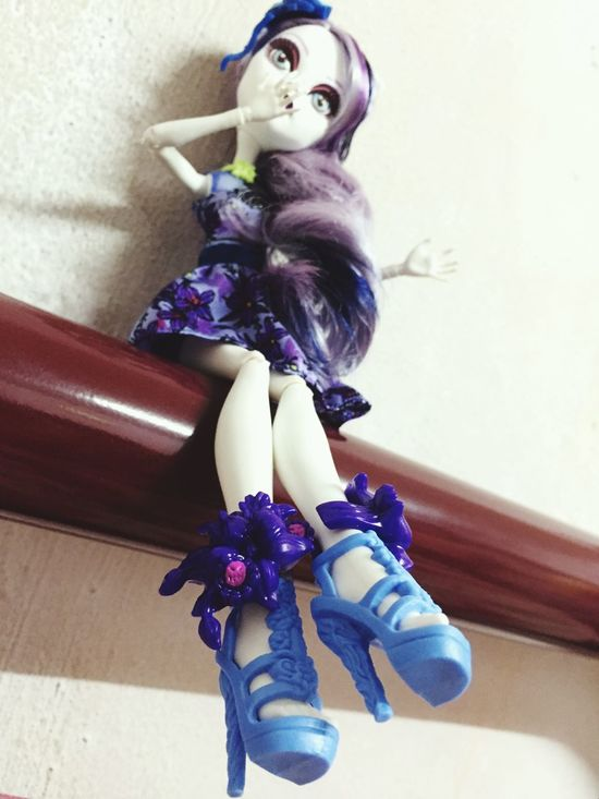 Catrine demew Check This Out Monsterhighmalaysia Gloomnbloom Catrinedemew Monster High Toysgraphy Dolls Dollsgraphy Taking Photos, Dolls