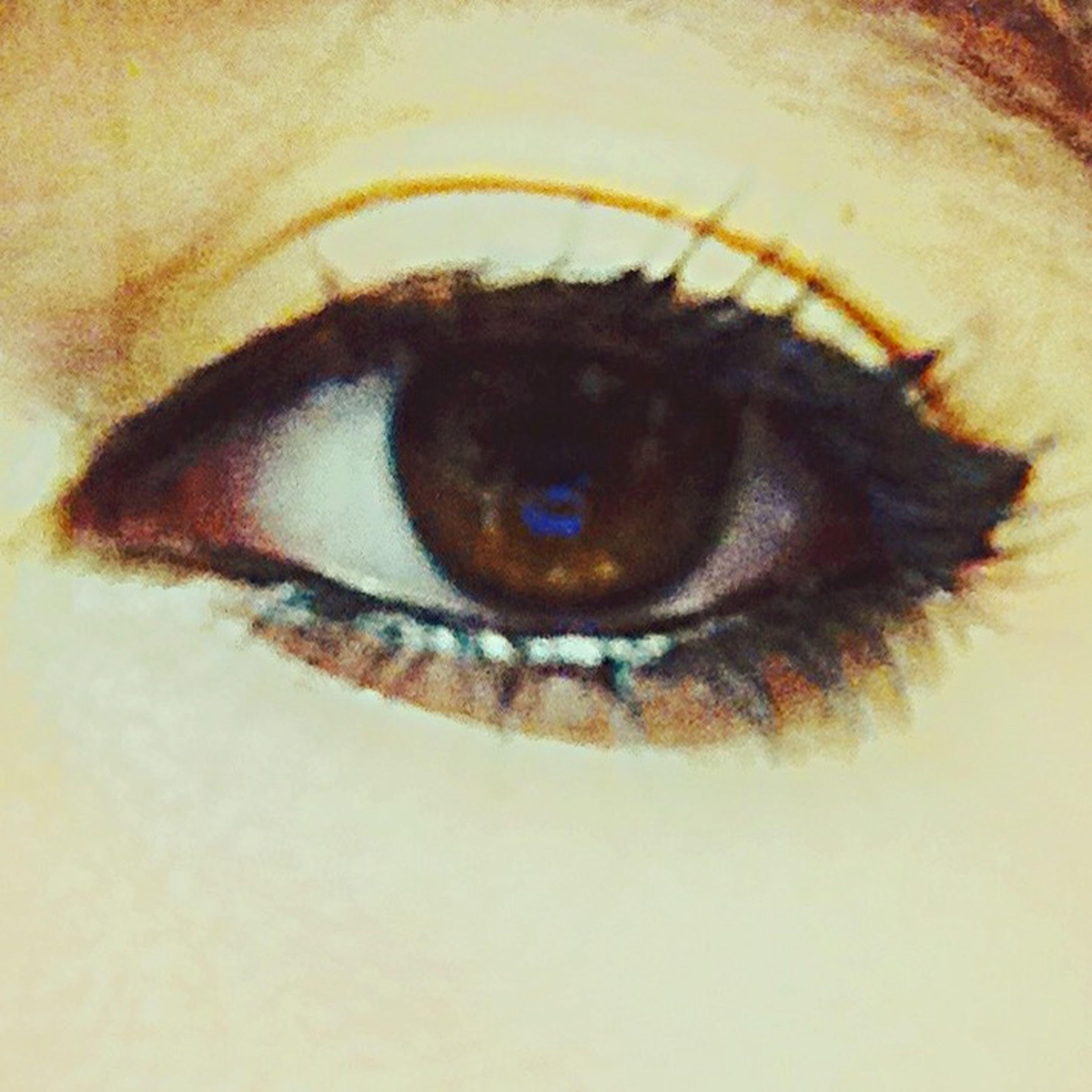 human eye, close-up, eyelash, looking at camera, portrait, indoors, eyesight, extreme close-up, sensory perception, eyeball, extreme close up, part of, iris - eye, human skin, human face, one animal, unrecognizable person