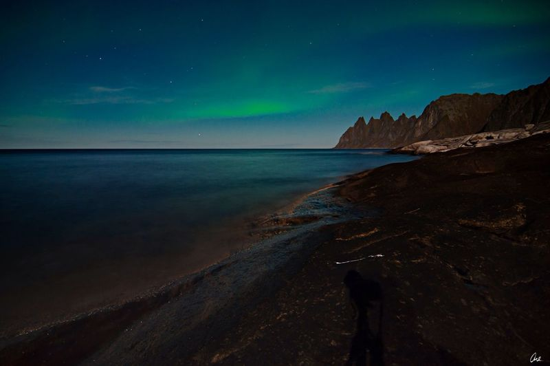 Aurora Aurora Senja  Nightlights Nature