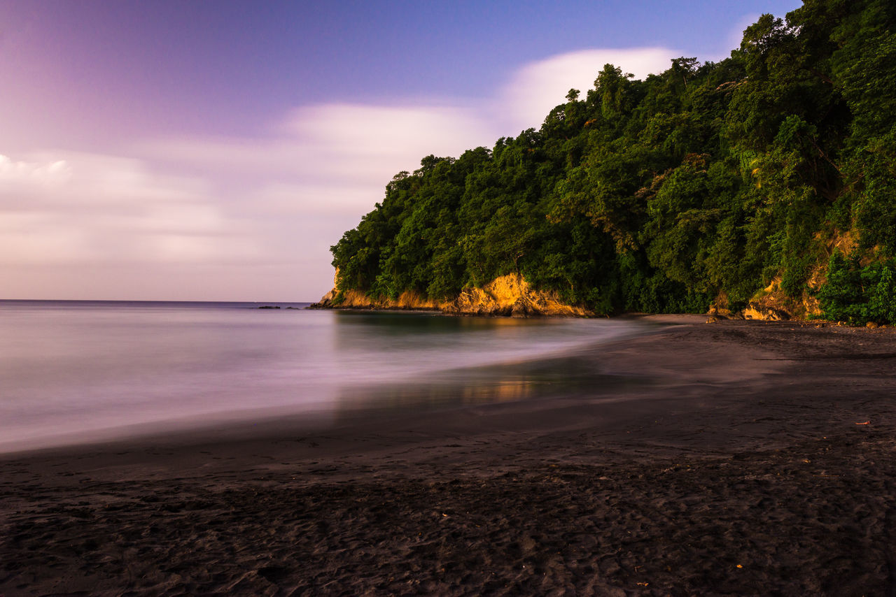 Anse Couleuvre at sunset Antilles Beach Beauty In Nature Calm Caribbean Coastline Exposure Forest French Idyllic Island Long Martinique Outdoors Reflection Remote Rocks Scenics Sea Shore Tranquility Travel Voyage Water