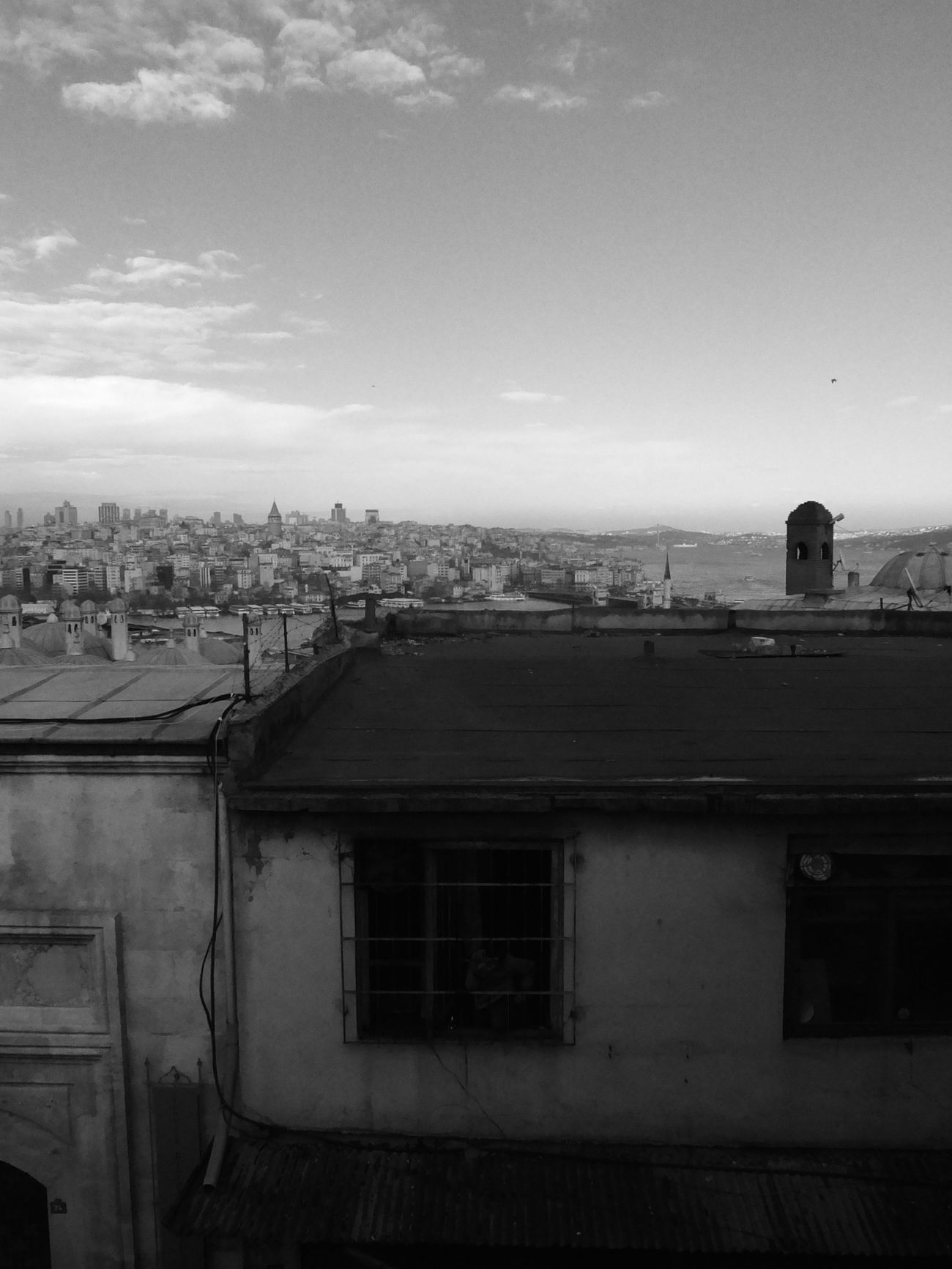 Blackandwhite Streetphotography Streetphoto_bw Photography View Rooftop Tholenski