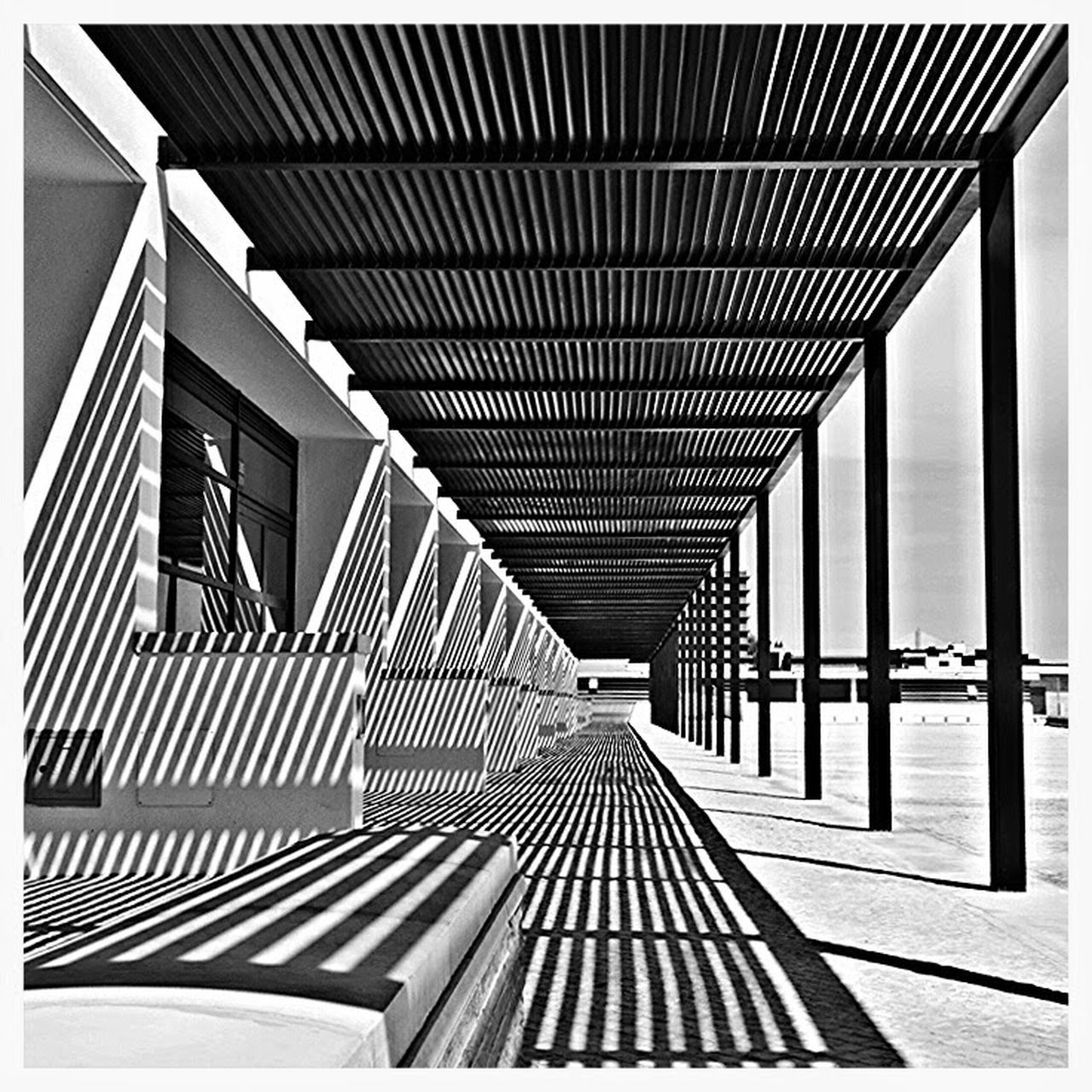Light Hardlight Shadow Lines Arquitecture Black & White