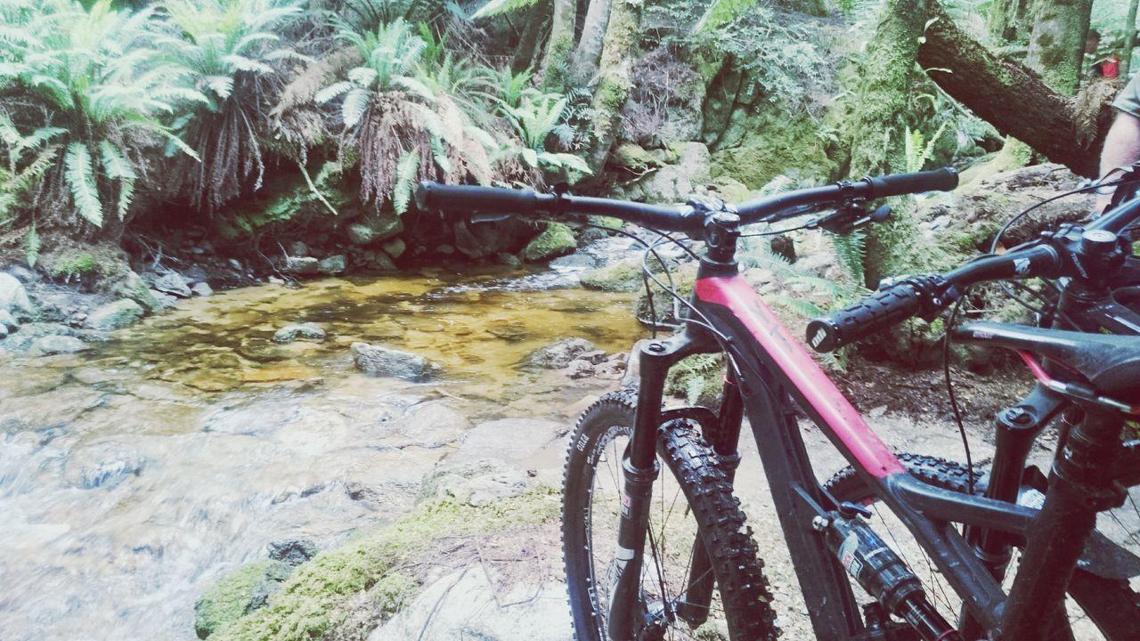 Bicycle MTB Biking Ytindustries Jeffsy Bluederby Tasmania TasmaniaAustralia Bluetier