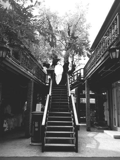 Walking Around Relaxing Taking Photos Blackandwhite Photography Holiday♡