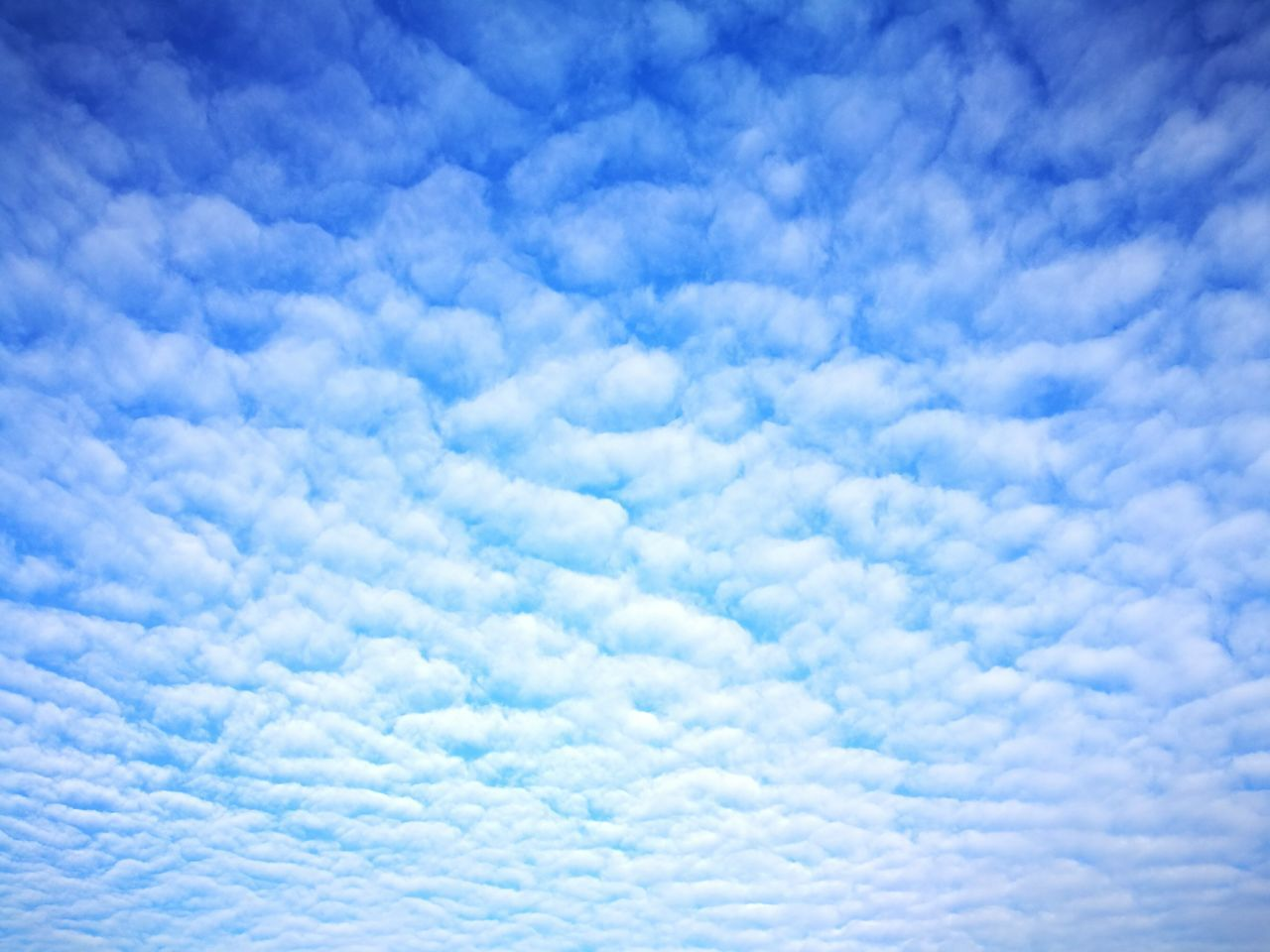 Clouds Backgrounds Blue Sky Nature Cloud - Sky White Color Heaven Fluffy Abstract Cloudscape Cumulus Cloud Textured  Sky Only Beauty In Nature No People Scenics Day Outdoors Full Frame Tranquility Simple Life Looking Up Patterns In Nature Snow Like Far Far Away