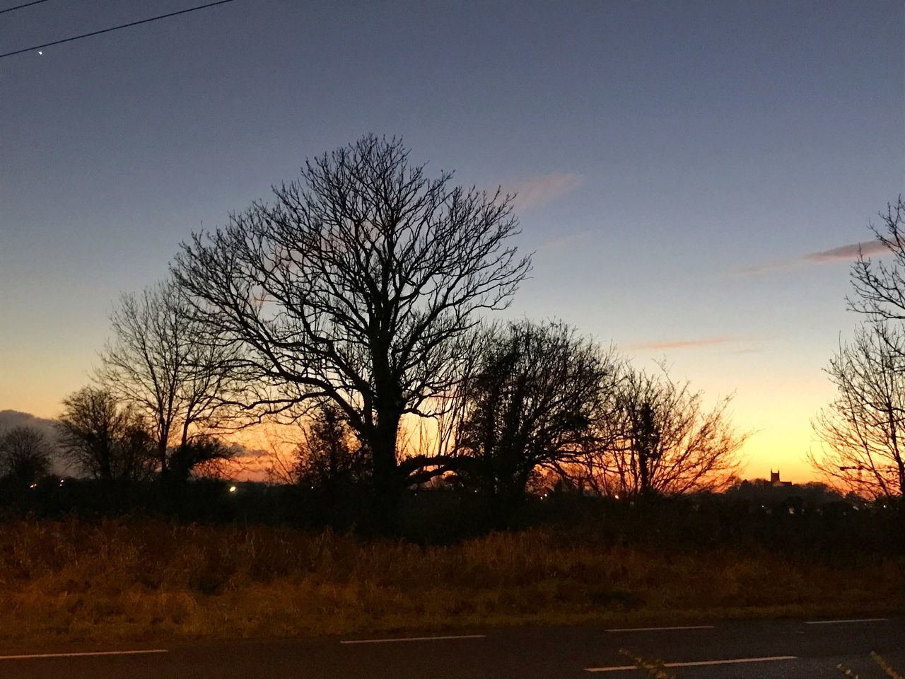 Sunset in Tullamore Bare Tree Tree Sky Sunset Silhouette No People Nature Tranquility Tranquil Scene Outdoors Scenics Beauty In Nature Branch Day