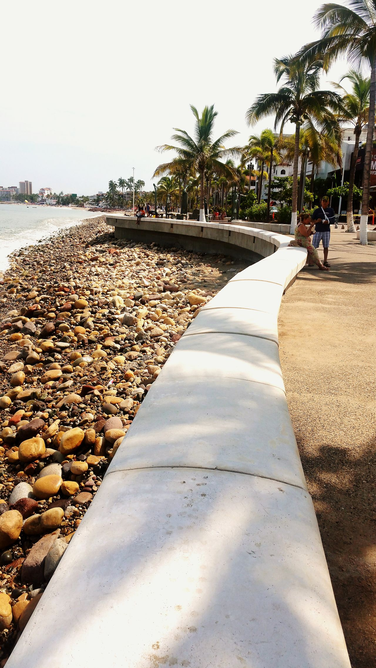 Puertovallartajalisco Malecón, Puerto Vallarta. Tree Shadow Palm Tree Empty Sunlight Tranquil Scene Relaxation Park - Man Made Space High Angle View Playadelosmuertos Architecture Travel Destinations Majestic