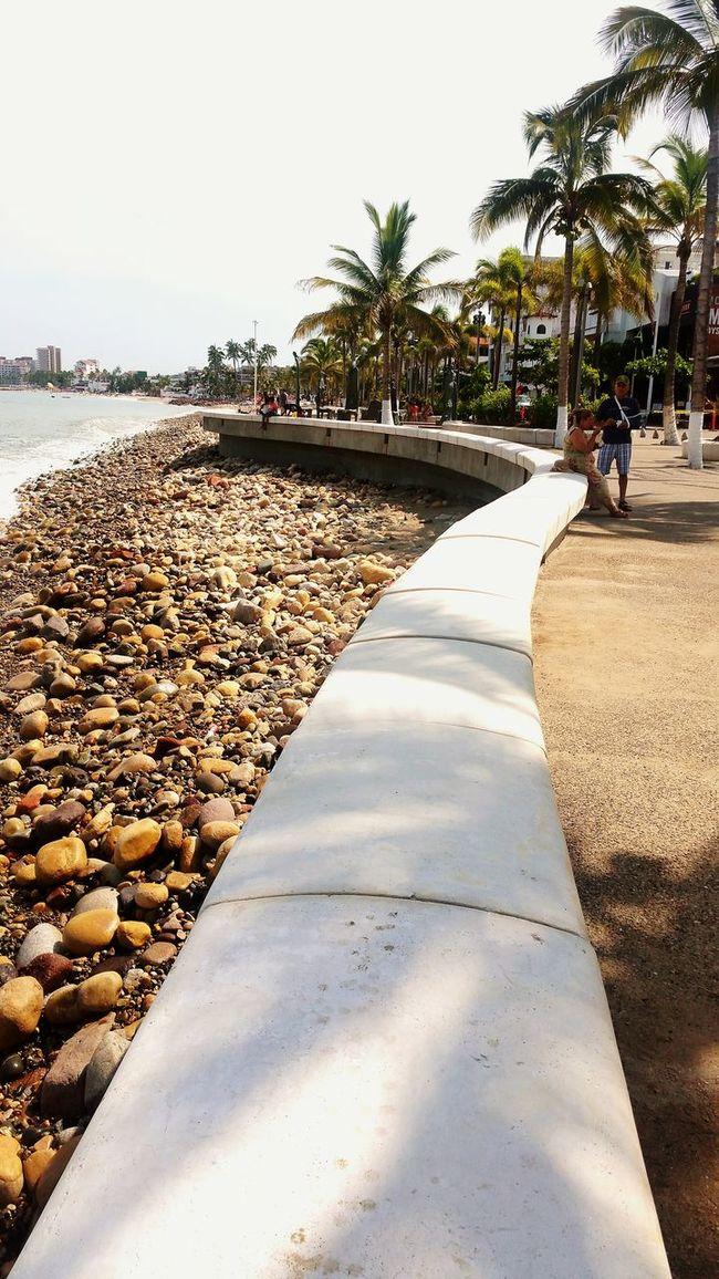Puertovallartajalisco Malecón, Puerto Vallarta. Tree Shadow Palm Tree Empty Sunlight Tranquil Scene Relaxation Park - Man Made Space High Angle View Playadelosmuertos Architecture Travel Destinations Majestic
