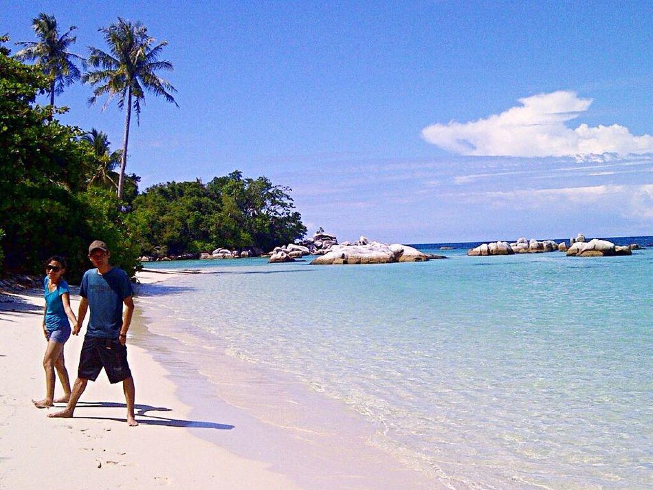💚 bird island Belitongisland INDONESIA EyeEm Indonesia Travellingindonesia First Eyeem Photo
