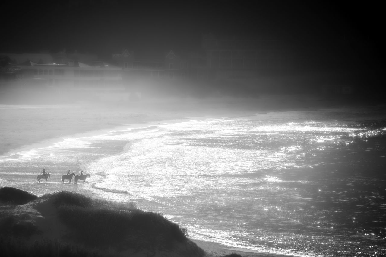 Misty morning ride Beach Beauty In Nature Black And White Horizon Over Water Horse Hout Bay Hout Bay Beach Outdoors Sea Water Wave