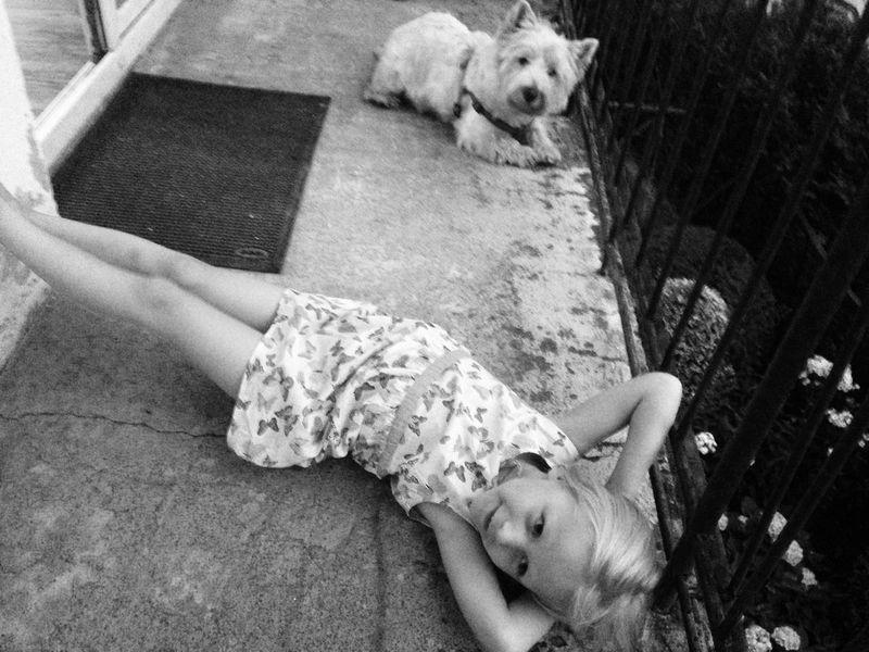 Happiness Westie Childhood LaFamilia