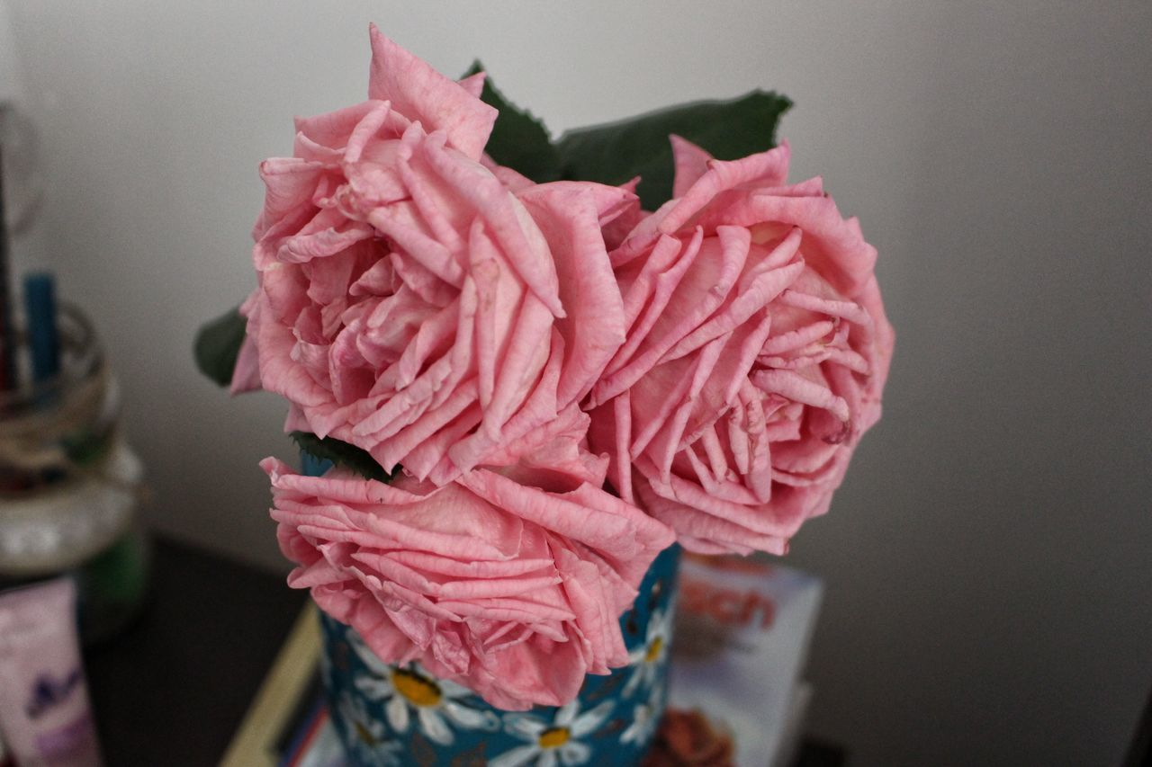 My bedside table smells like roses Flower Indoors  Pink Color Close-up Fragility Goodmoring DIY At Home Cosy Roses Flowers Blue Daisys Cosyhome Detail Decoration