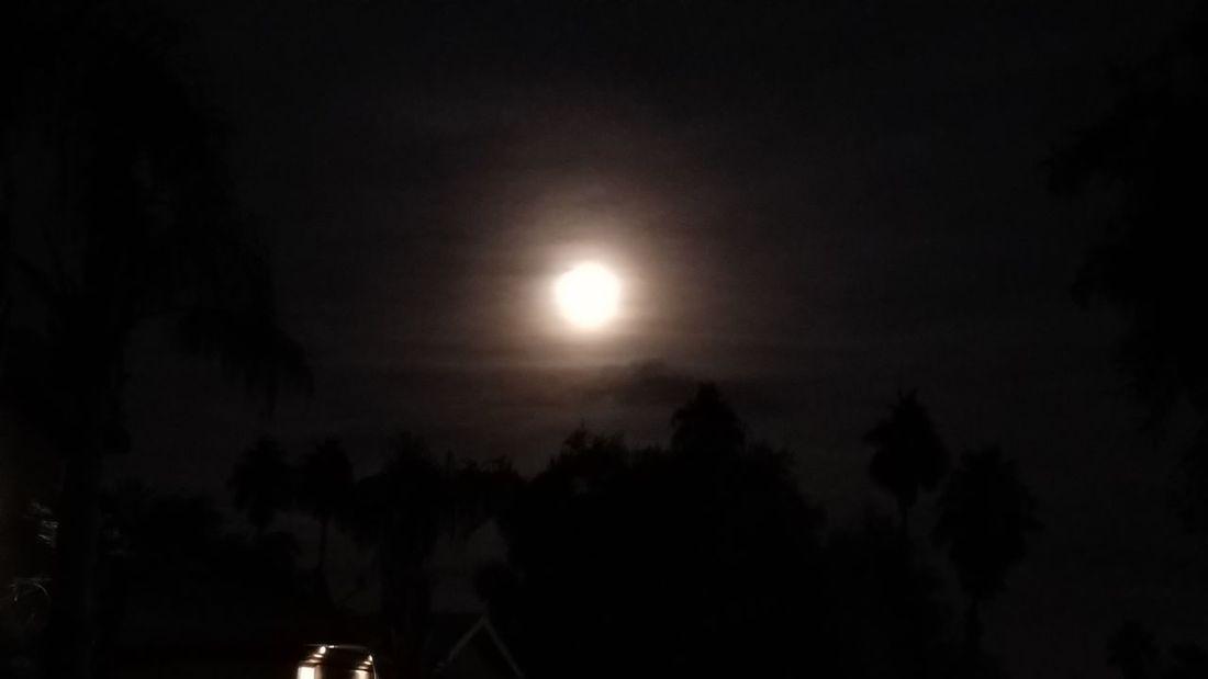 Night Moon Dark Nature Sky
