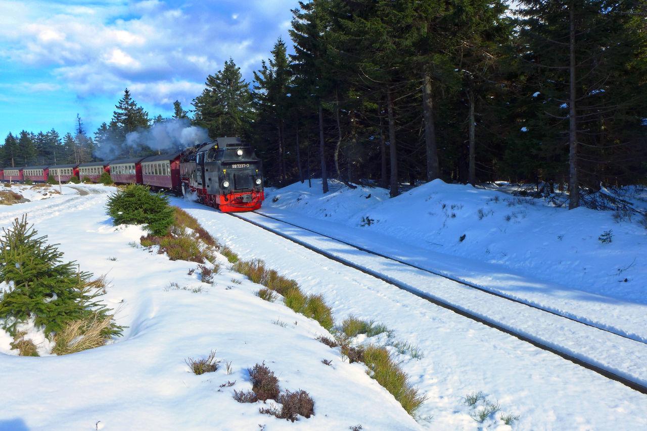 Winterwanderung im Mai auf dem Hexenstieg Brockenbahn Dampflokomotive Harz Hexenstieg Rail Sky And Clouds Snow Steam Engine Train Trees And Sky Wanderlust