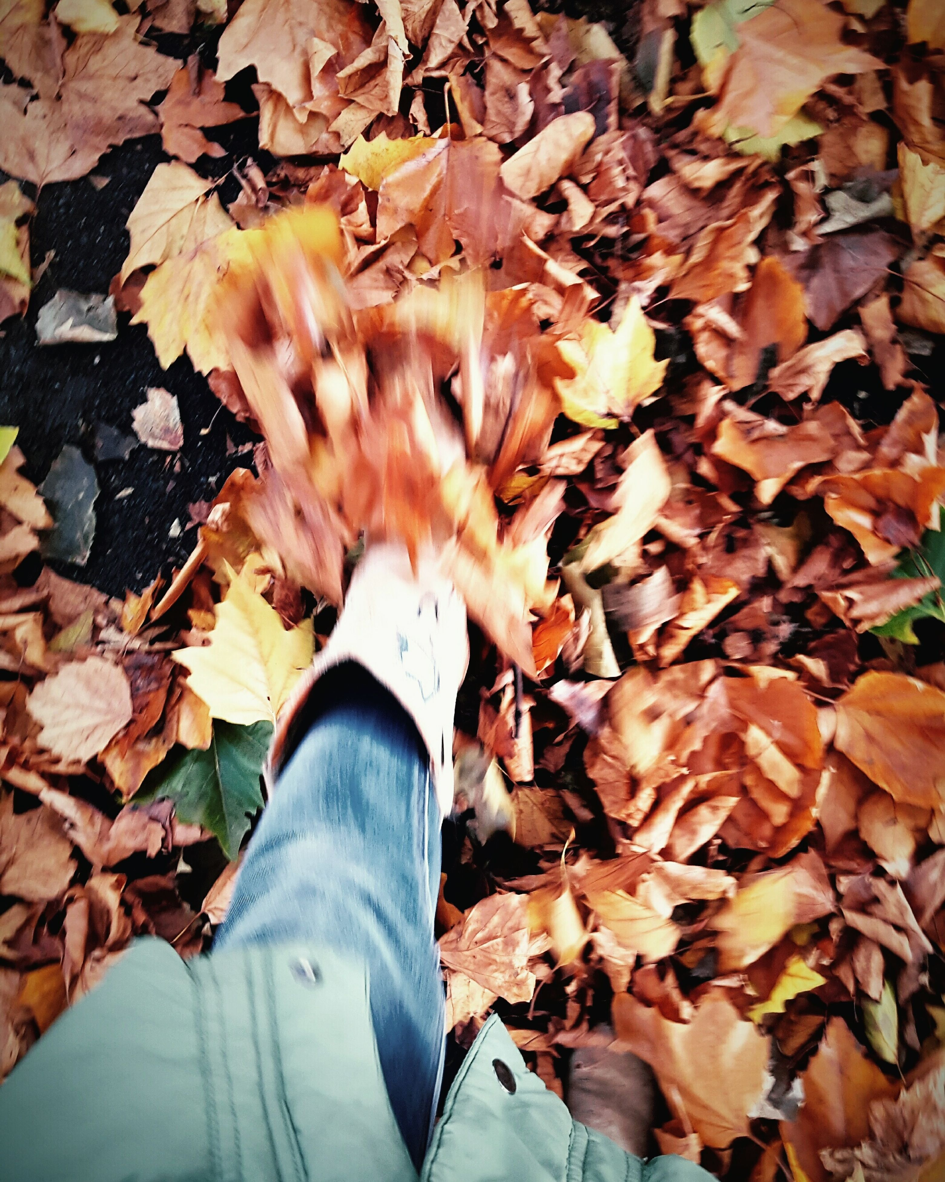 leaf, autumn, change, nature, real people, outdoors, personal perspective, human body part, human hand, close-up, one person, day, leaves, beauty in nature, human leg, maple leaf, maple