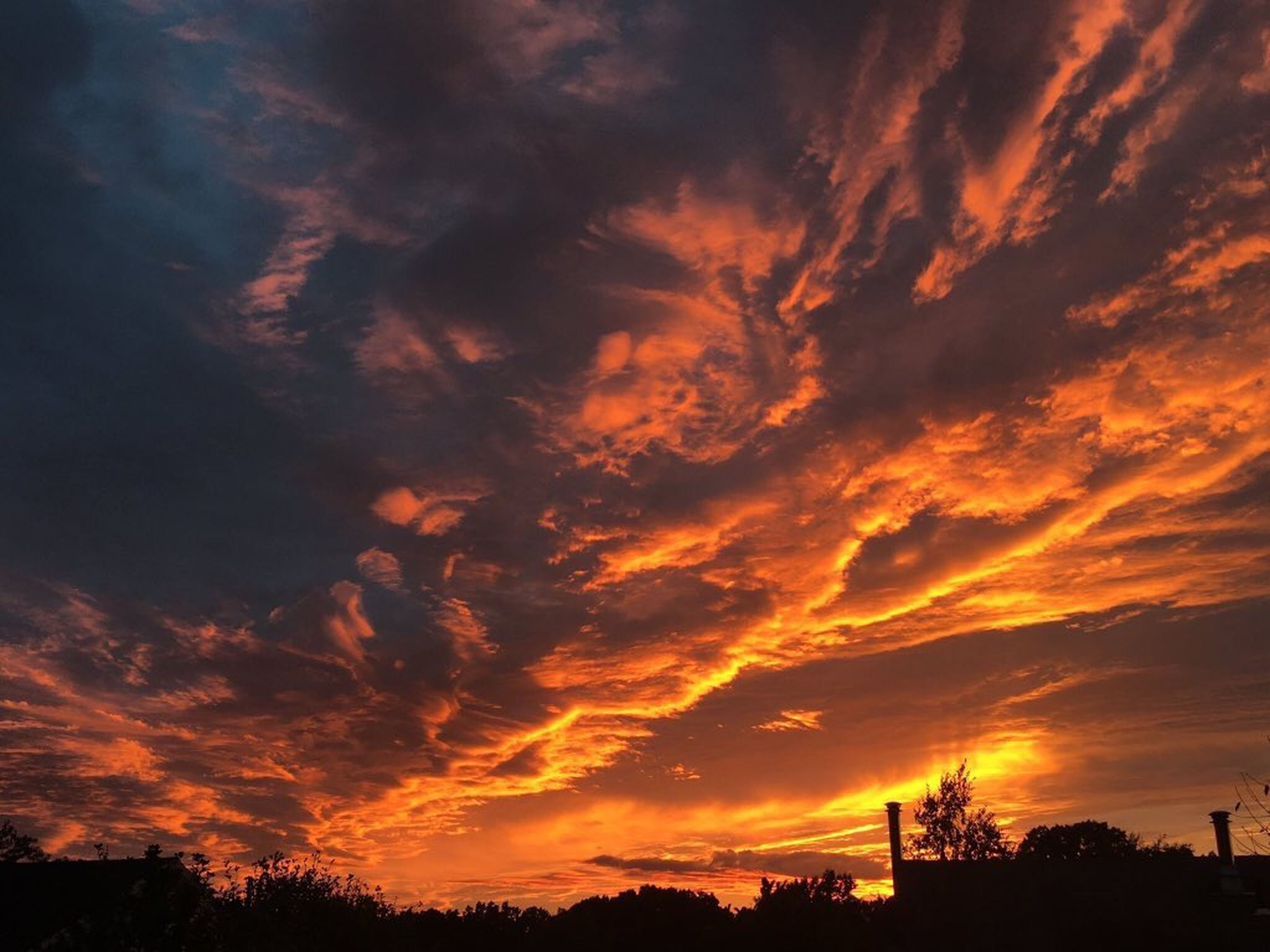sunset, sky, beauty in nature, nature, cloud - sky, scenics, orange color, low angle view, silhouette, idyllic, no people, tranquility, dramatic sky, outdoors, astronomy