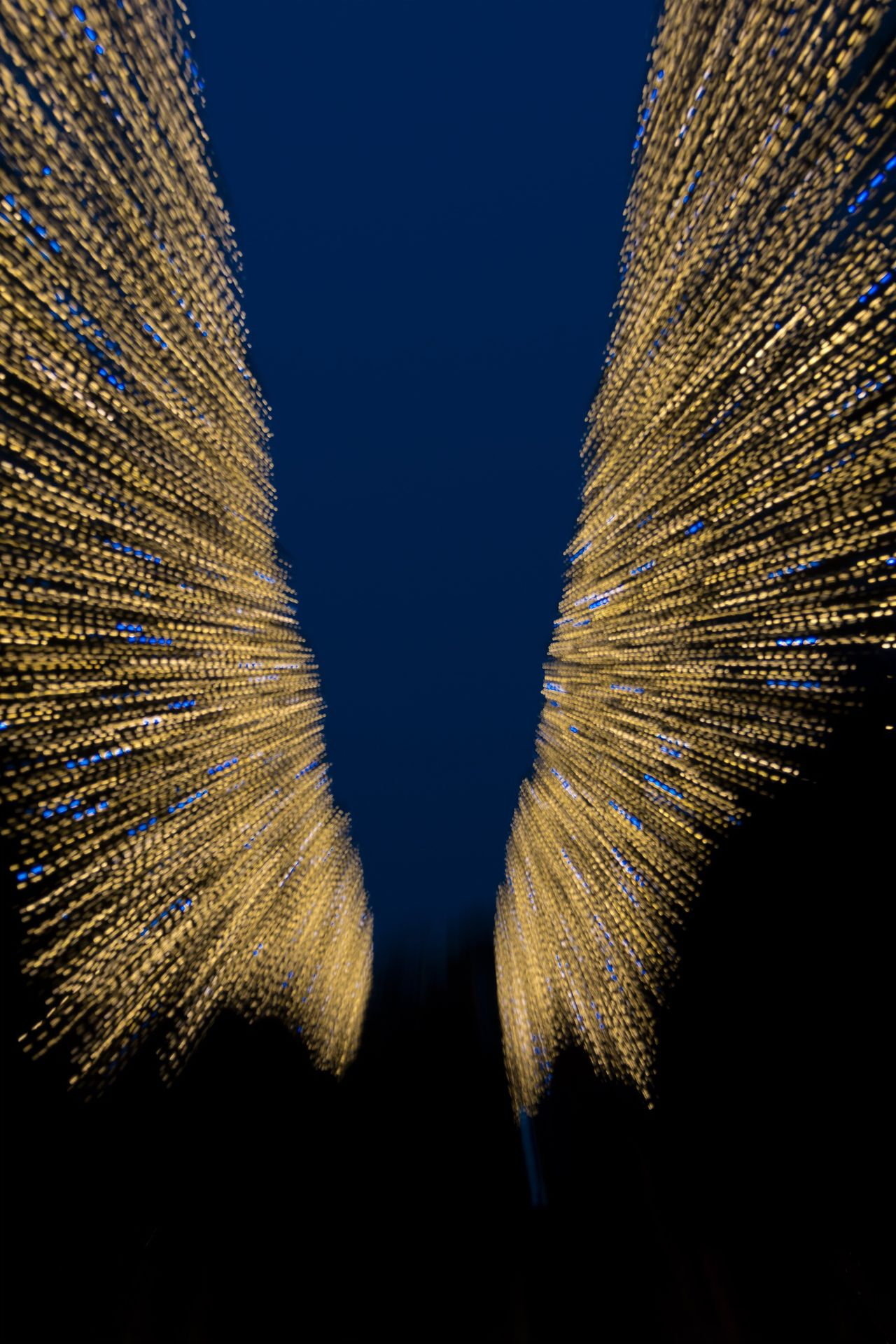 Wings but where is the angel? In Oliwa Park. Gdansk Poland Lights Wings Angel Wings Lightart Artofthelight