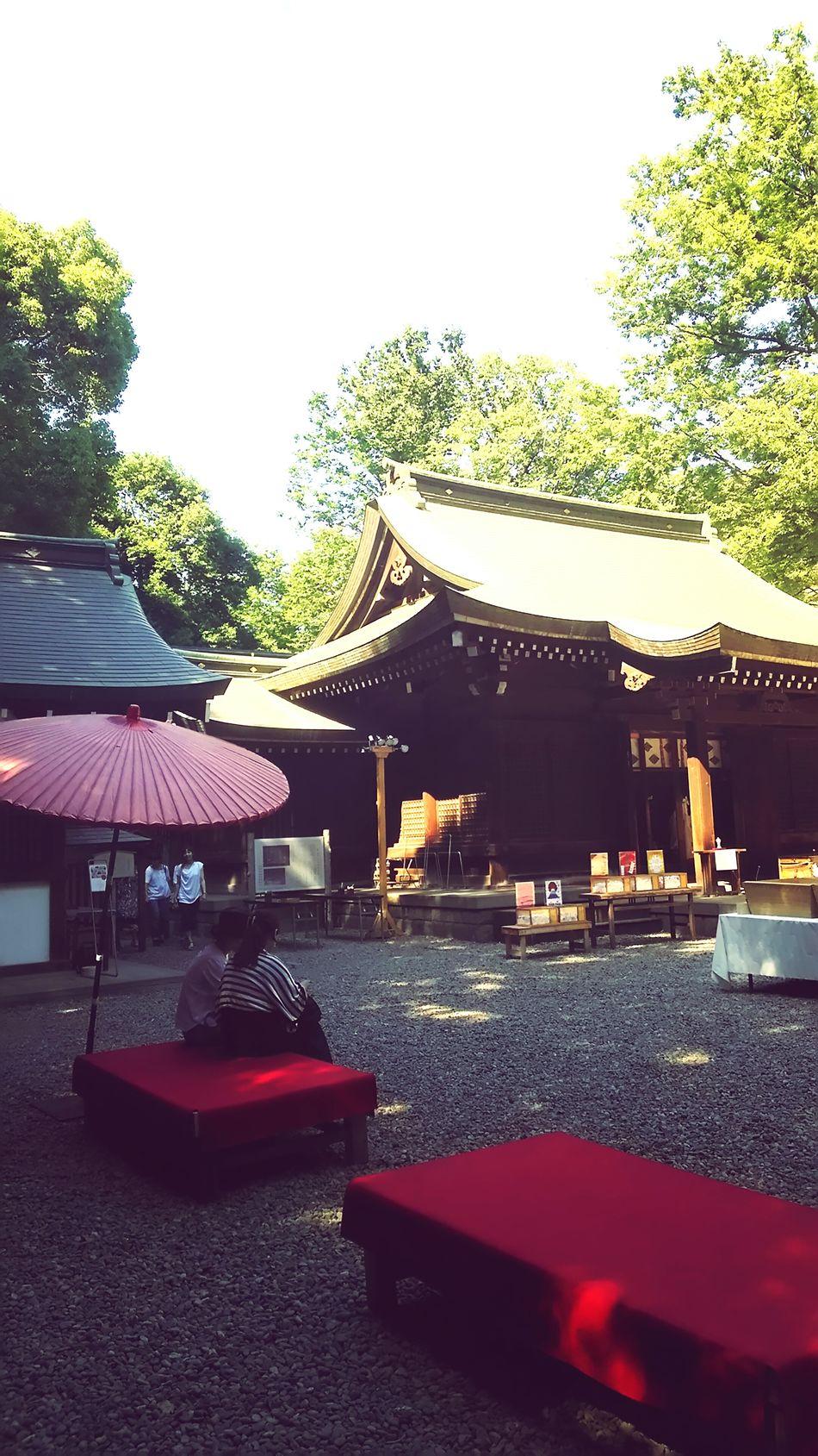 氷川神社 境内 Japanese Shrine 川越 Japan