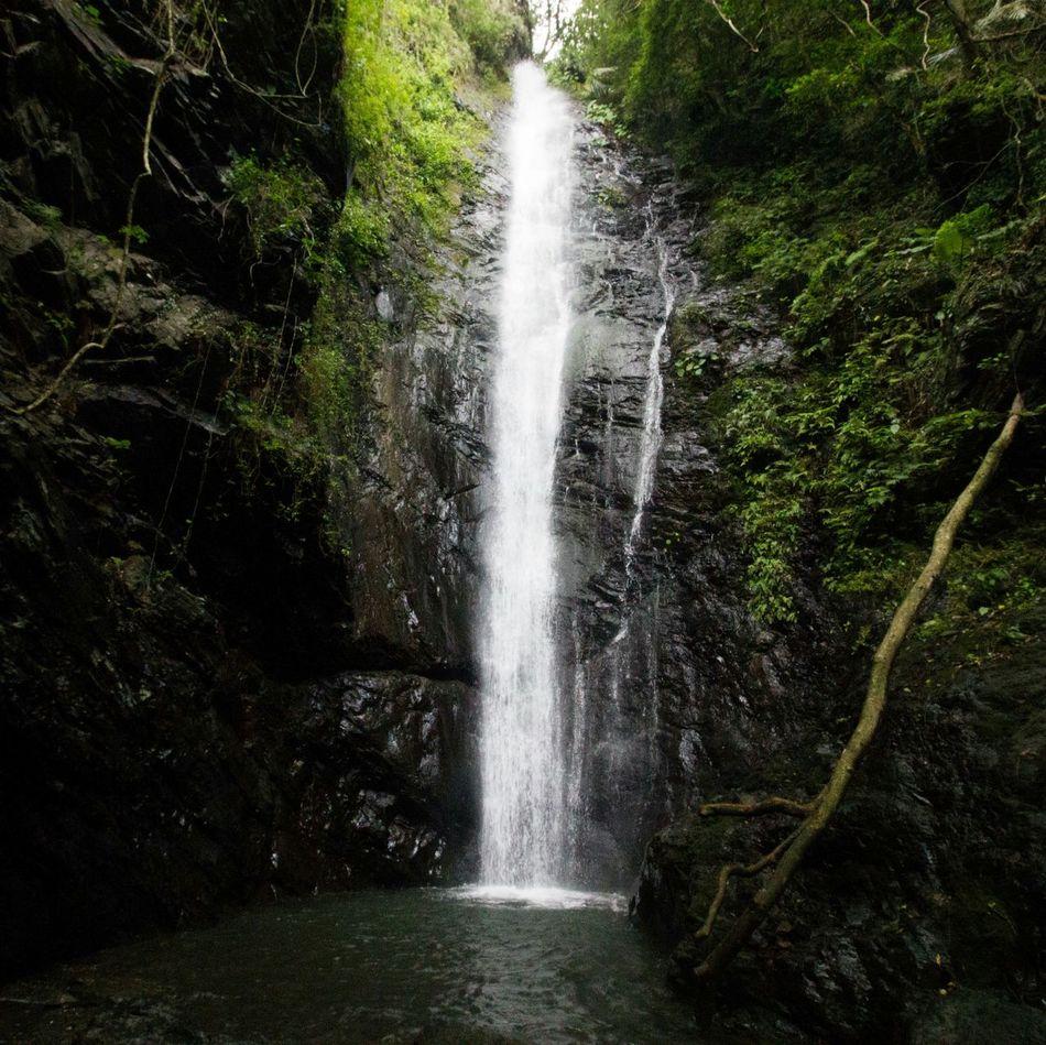 大津瀑布 dajin Waterfall Taiwan 大津 瀑布