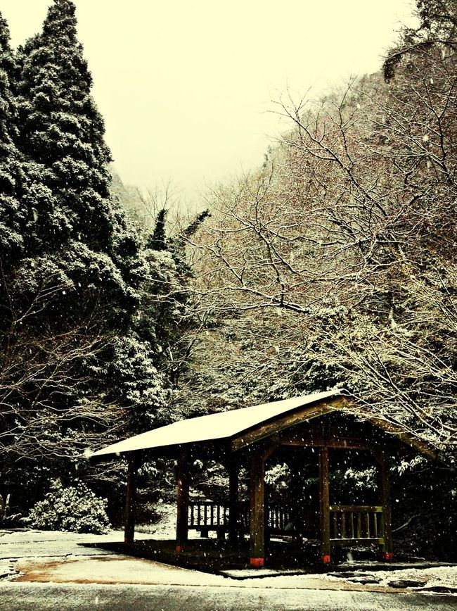 Snow Scene  Snow Day Black And White