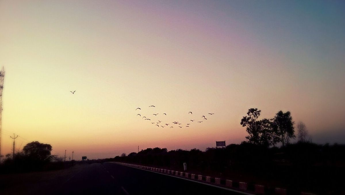 Check This Out Birds Blue Sky Save Birds Save Planet Bird In Flight Sunset #sun #clouds #skylovers #sky #nature #beautifulinnature #naturalbeauty #photography #landscape Flying