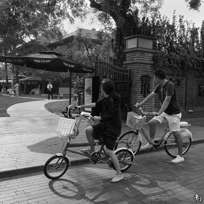 Tree Transportation Land Vehicle Mode Of Transport Full Length Bicycle Built Structure Architecture Lifestyles Building Exterior Leisure Activity Riding Motion Casual Clothing Outdoors Day Ricoh Gr Stree Photography Black & White Tianjin China Your Design Story City Street