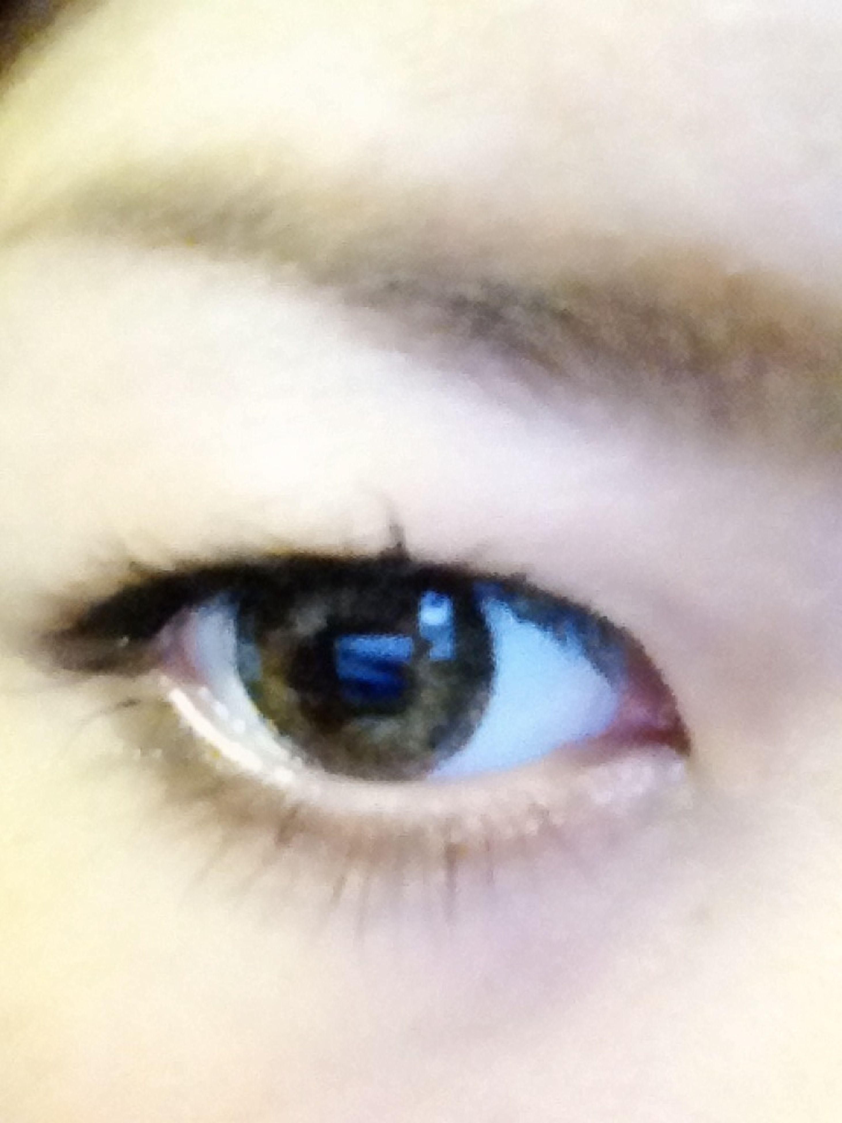 human eye, eyelash, close-up, eyesight, looking at camera, portrait, sensory perception, extreme close-up, part of, eyeball, iris - eye, indoors, extreme close up, human face, human skin, vision, eyebrow