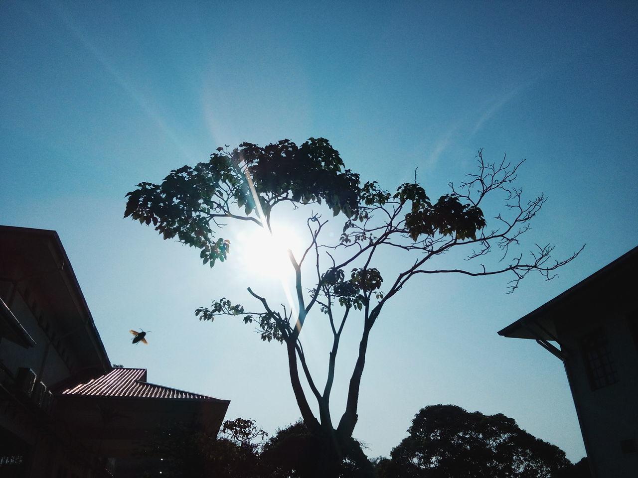 Pahang, Malaysia