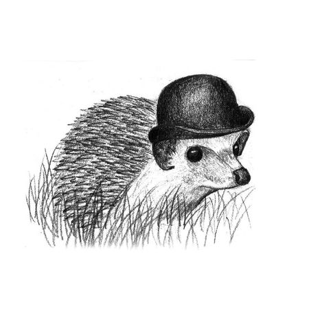 Hedgehog in a bowler hat Animal Themes Art Art And Craft Art, Drawing, Creativity Artist Artistic Arts Culture And Entertainment ArtWork B&w Blackandwhite Draw Drawing Drawing ✏ Drawings Hedgehog Hedgehogs Hedgehogsofinstagram Pencil Pencil Drawing Surreal Surrealism Surrealist Art