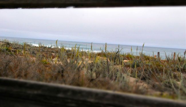 Pacific Ocean California Coast California California Love Beautiful Nature Beautiful View MyPhotography Myperspective Myhappyplace Livelaughlove♡ Sandy Dunes