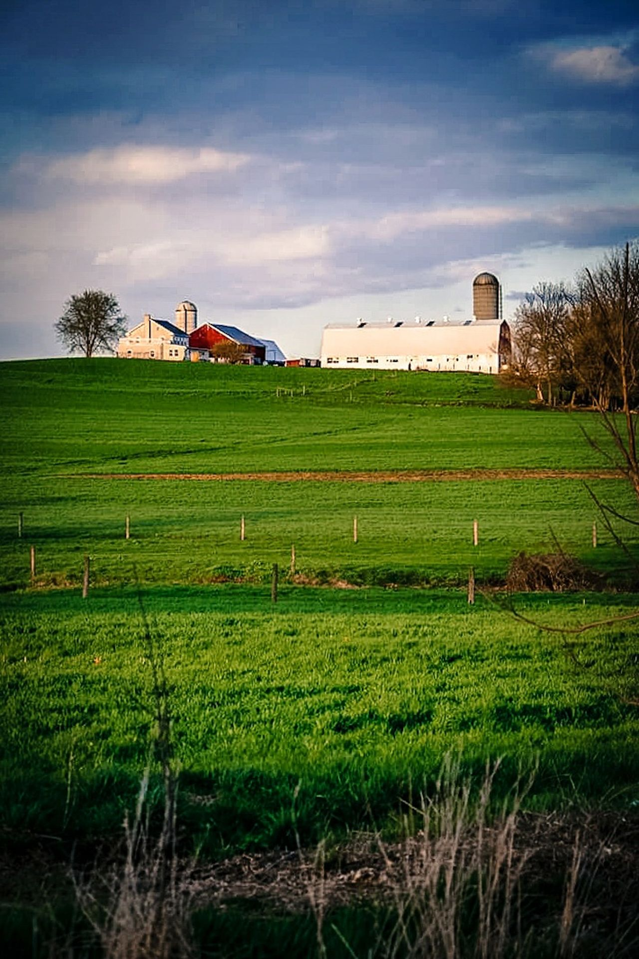 Old farmhouse. The Great Outdoors With Adobe Farm House Green Green Color Nature EyeEm Best Shots Beauty In Nature The Way Forward Sky Cloud - Sky Idyllic Outdoors Scenics Day Field Sky_collection