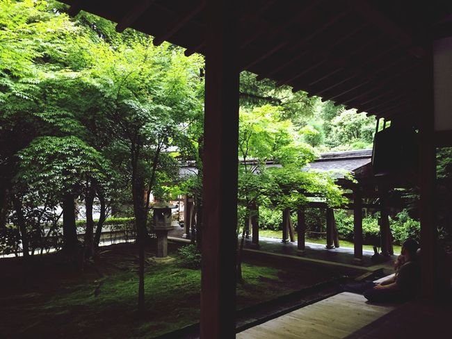 Introducing Culture Of Japan Which Must Be Left To The Future…… 未来に残す日本の文化 Kyoto