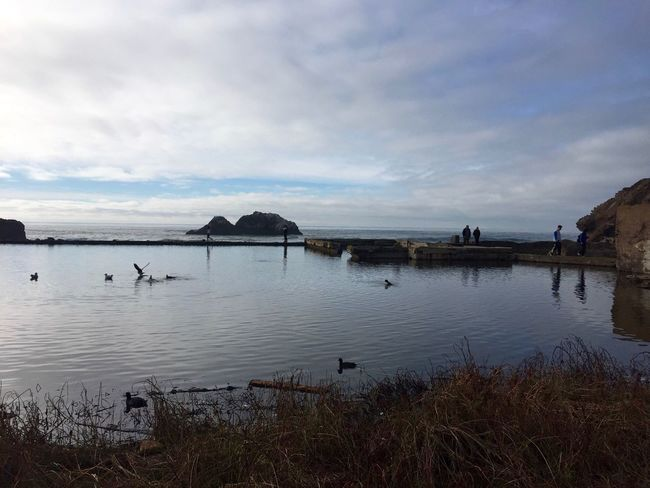 Peace and beauty at Sutro Baths. Sutro Bath Ruins  San Francisco Peace And Quiet Check This Out Peaceful Taking Photos Enjoying Life Relaxing Reflection Ocean Water Baths Beach